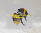 Greetings cards Notelets 5 Printed from an original watercolour BEE