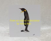 Greetings cards 5 Printed from an original watercolour PENGUIN