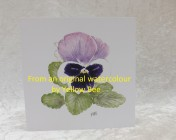 Greetings cards 5 Printed from an original watercolour PANSY