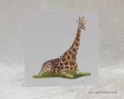 Greetings cards Notelets 5 Printed from an original watercolour GIRAFFE