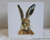 Greetings cards Notelets 5 Printed from an original watercolour HARE
