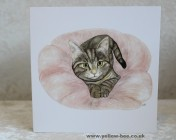 Greetings cards Notelets 5 Printed from an original watercolour TABBY KITTEN