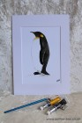 Mounted Print from original watercolour PENGUIN