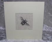 Greetings Card – Grey Bee Fabric